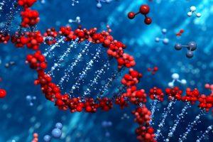 Geny i satysfakcja małżeńska